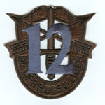Special Forces Crest Patch with 12th Group Number (Subdued w/ Teal) - Item Number: P-04000S