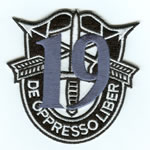 Special Forces Crest Patch with 19th Group Number - Item Number: P-04100