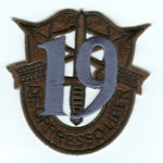 Special Forces Crest Patch with 19th Group Number (Subdued w/ Teal) - Item Number: P-04300S