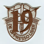 Special Forces Crest Patch with 19th Group Number (Desert) - Item Number: P-04400D