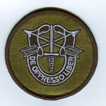 Special Forces Crest Patch - Item Number: P-00100