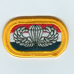 20th SF Group Oval with Basic Airborne Wings - Item Number: P-10400
