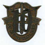 Special Forces Crest Patch with 10th Group Number (Subdued) - Item Number: P-03100S