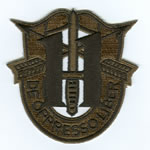 Special Forces Crest Patch with 11th Group Number (Subdued) - Item Number: P-03600S