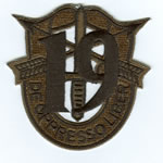 Special Forces Crest Patch with 19th Group Number (Subdued) - Item Number: P-04200S